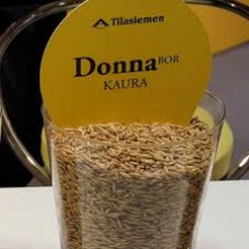 Donna Kaura Luomu 600 kg